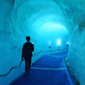 chamonix-mer-de-glace-grotte