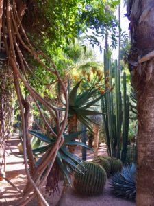 jardins Majorelle retraite yoga marrakech