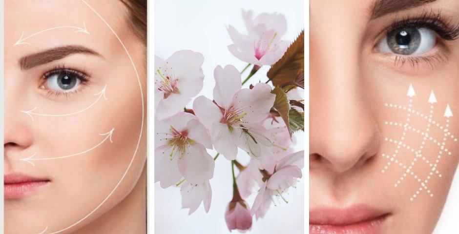 massage japonais visage