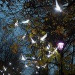 geneva lux festival l'envol activités geneve décembre