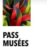 pass musee blog geneve bon plan