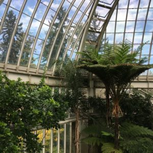 Serre jardin botanique activités geneve blog